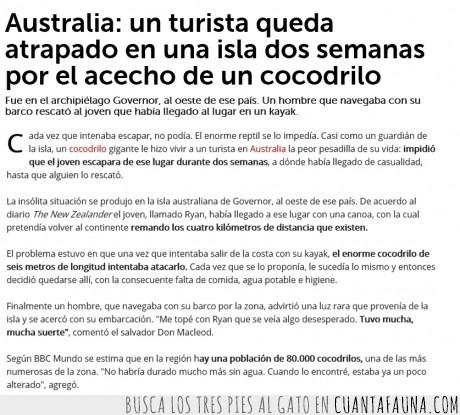 atrapado,Australia,Cocodrilo,isla Governor,La película en la que estás pensando es,turista