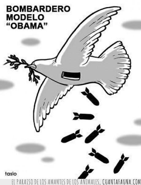 bombas,guerra,logica,obama,paloma,paz