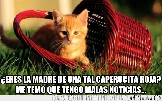 campo,caperucita roja,cesta,gato,madre,malas noticias