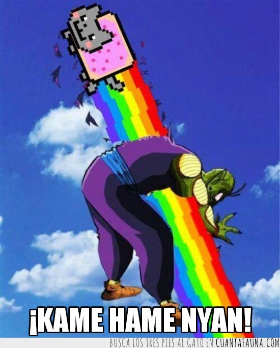 ARCOIRIS,DRAGON BALL Z,GATO,KAME KAME,NYAN CAT