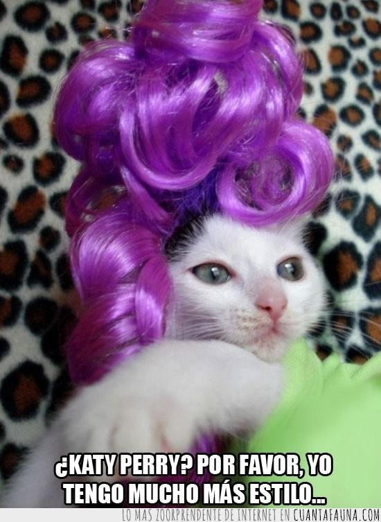 gato,katy perry,lila,peinado,peluca,violeta