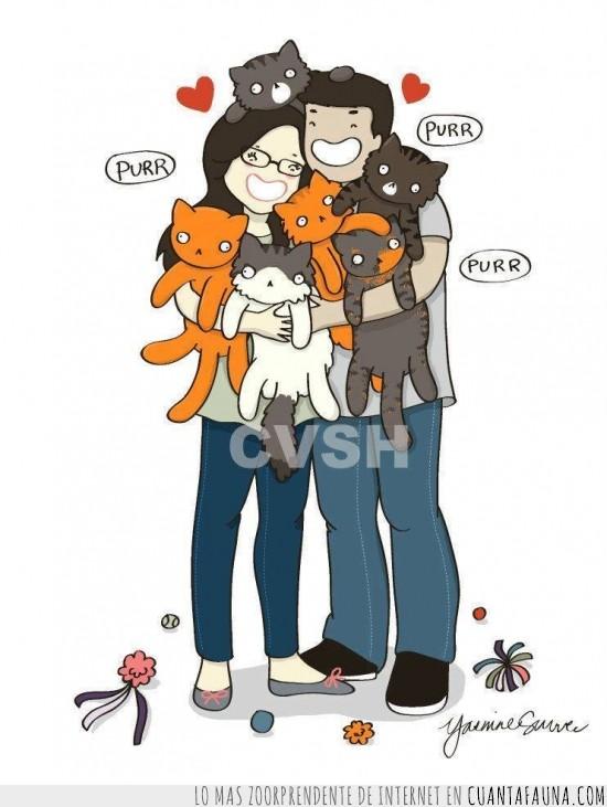 familia,gato,locos de los gatos,pareja,perfecta