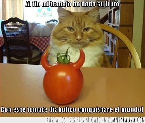 cuernos,diabólico,dominar,mundo,tomate