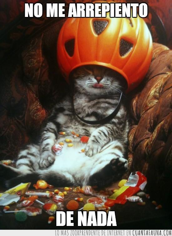comer,dulces,gato,risa,truco o trato