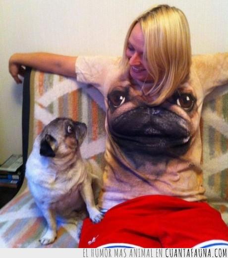 camiseta,cara,perro,pug