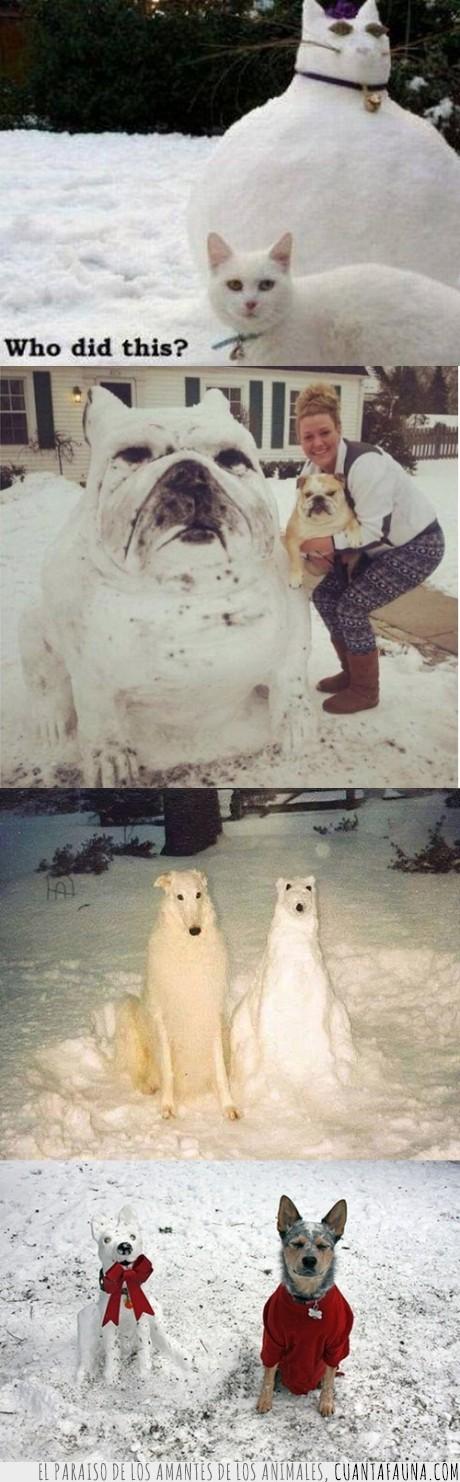 animal,bulldog,frio,gato,muñeco,nevada,nieve,perro