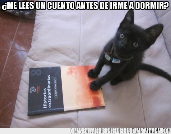 cuento,dormir,edgar allan poe,gato,leer,negro
