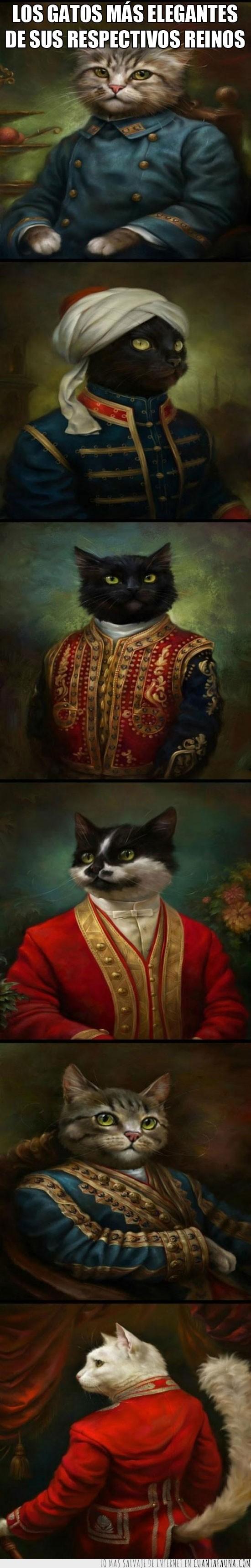 antiguas,elegantes,gato,oleo,pinturas,reinos,señor,sir