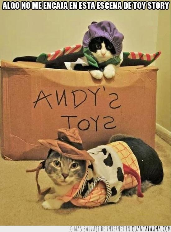 buzz lightyear,caja,cosplay,disfraces,gatos,juguetes,toy story,woody