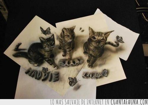 3D,Gatos,ilusión,lápiz,papeles,visual