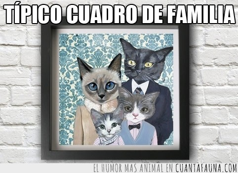 cuadro,familia,Gatos,hijos,madre,padre