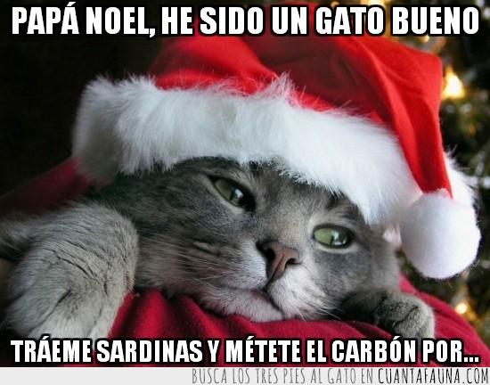 carbón,gatito,Gato,navidad,papá noel,sardinas