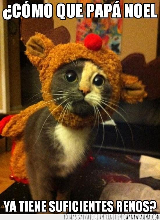 gorro,navidad,papá noel,suficientes renos