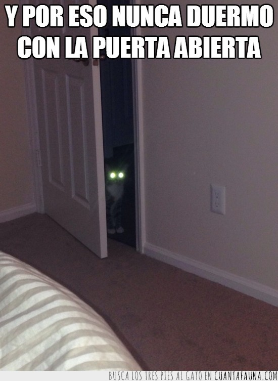 dormir,espiar,puerta cerrada,vigilar,¡quita las largas!