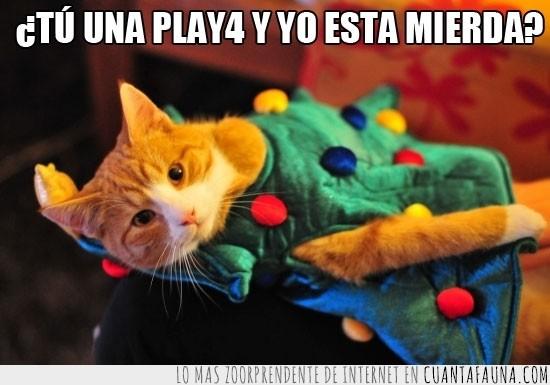 árbol,disfraz,Gato,Navidad,navideño,play4,regalo,traje