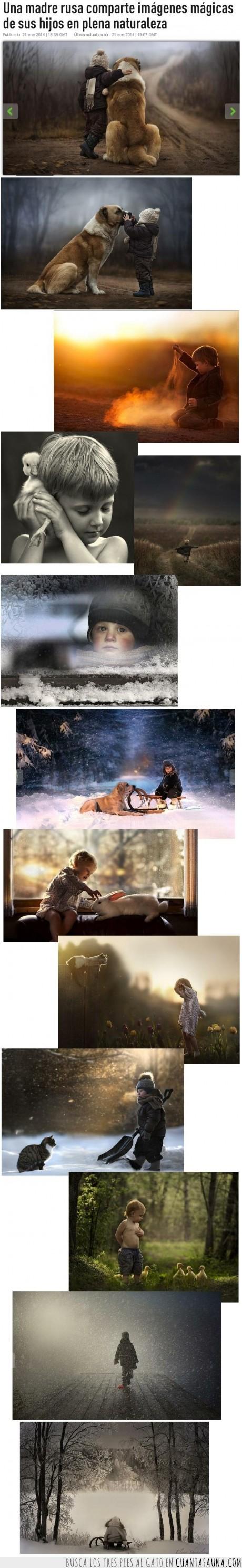 fotos magicas,gato,invierno,madre fotografa,madre rusa,naturaleza,niños inocentes,pato,perro