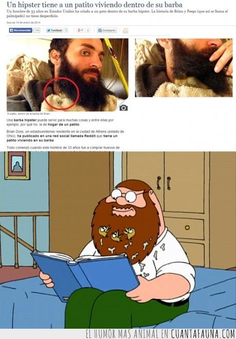 barba,hipster,pato,peter,sucio,tendencia