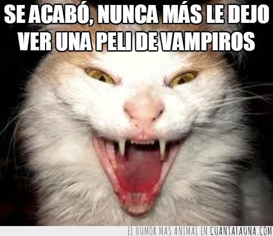 deliciosa,gato,humano,morder,peliculas,sangre,vampiro