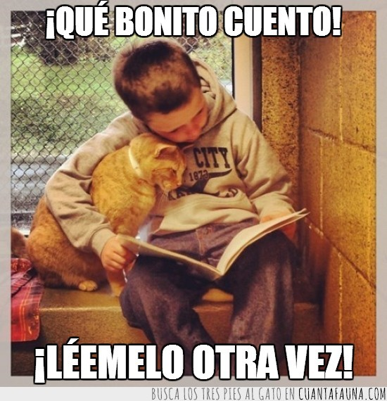 cuento,gato,leer,libro,niño
