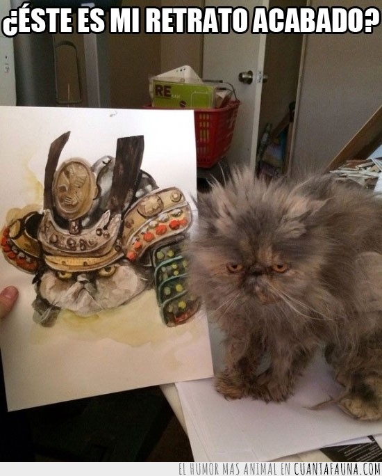 casco,dibujo,gato,retrato,samurai,shogun