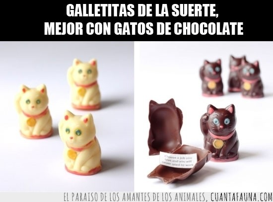 9428 - Lucky Cats