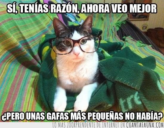9489 - Gafotas