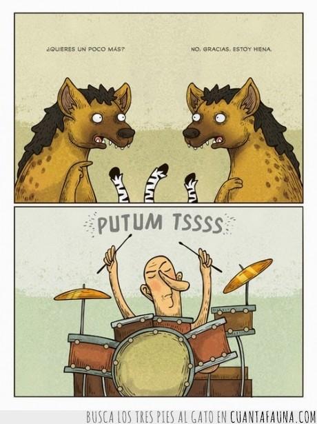 batería,cebra descuartizada,comer,hiena,humor,llena,lleno