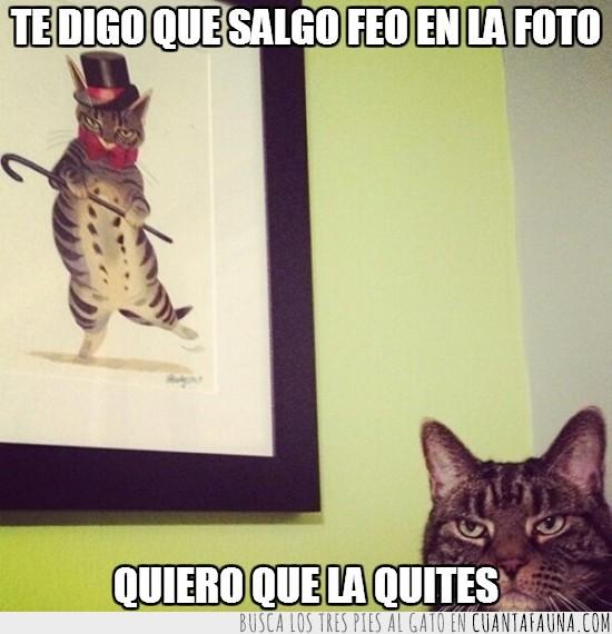 baston,cuadro,feo,foto,gato,quitar,sombrero