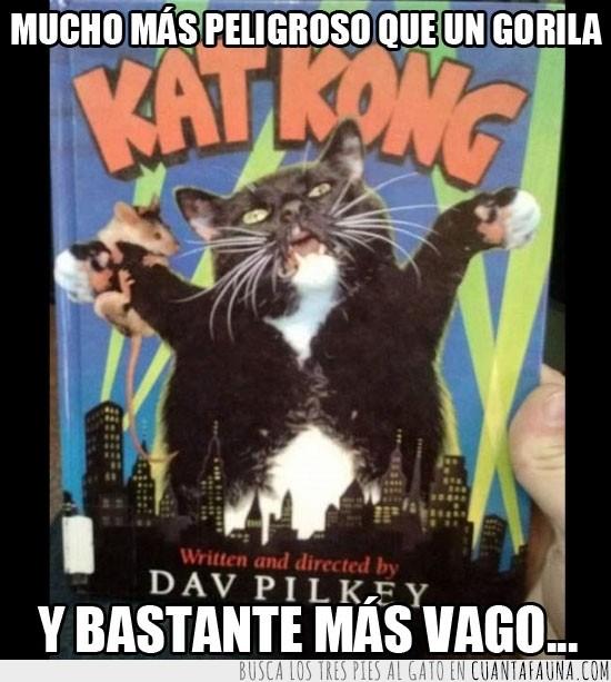 gato,gato gigante,kat kong,katkong,leer,libro