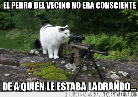 camper,disparar,francotirdor,guerra,ladrar,mirilla,perro,precision,preparar