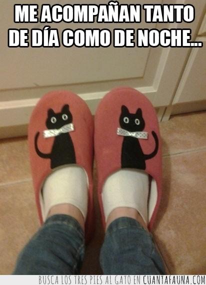 acompañar,gatos negros,loca de los gatos,zapatillas