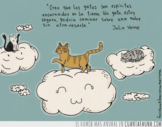 espíritu,gatos,julio verne,nube,saltar