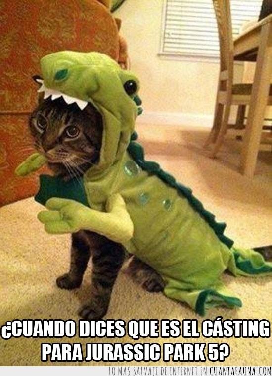 cásting,difraz,dinosaurio,gato,gatosaurio,jurassic park 5