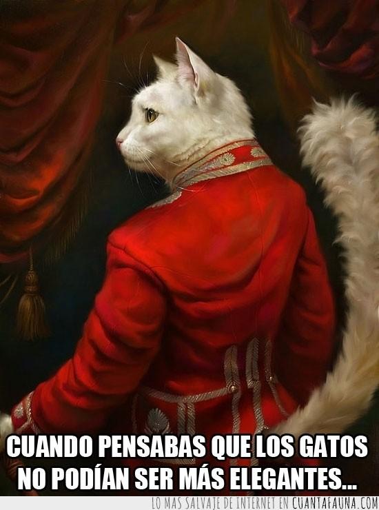 blanco,Gato,general,grandeza,pintura,rojo,sir,traje