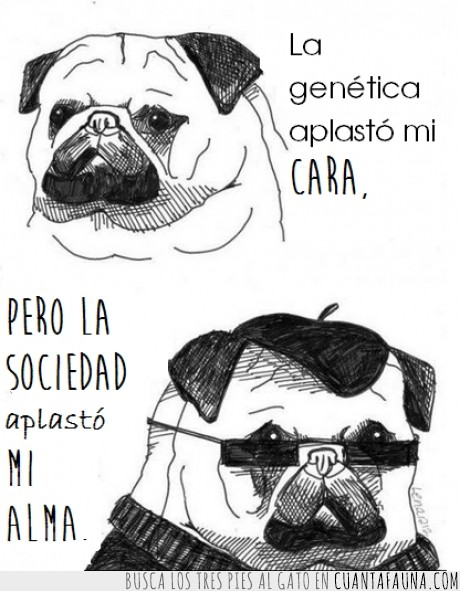 alma,aplastar,aplasto,cara,genetica,incomprendidos,perro,poeta,pugs,sociedad