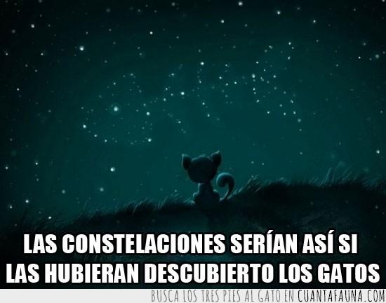 constelaciones,estrellas,gato,imaginación,pescado,raspa