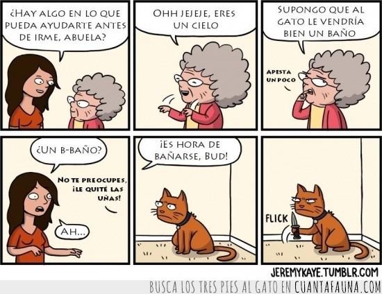 abuelita,agua,bañar,comic,gato,navaja,susto