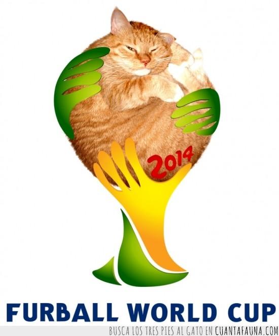 2014,bola,Brasil,copa,Gato,logo,mundial,naranja,pelo