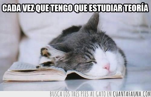 aburrimiento,dormir,estudiar,libro,sueño,teoría