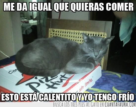 caja,calentita,caliente,encima,pizza,pizza hut