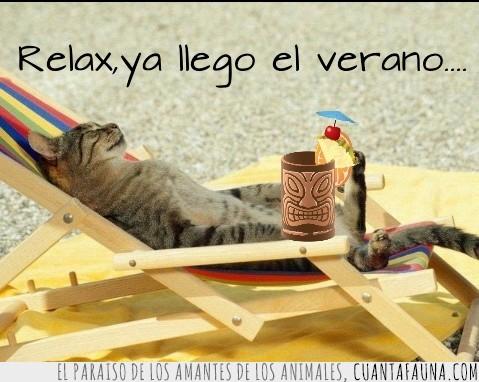 descansar,hamaca,relax,tumbona,verano