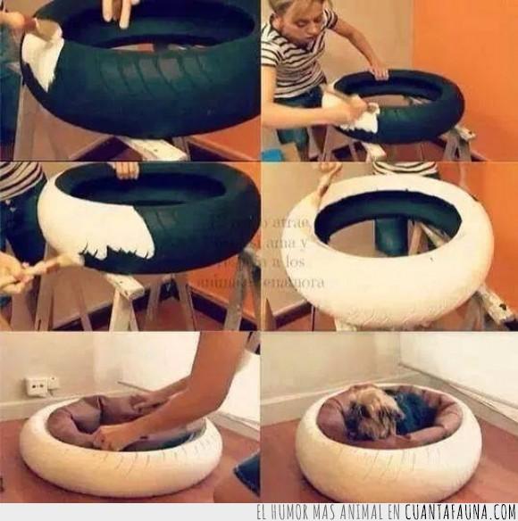 blanco,cama,caucho,colchon,dormir,neumático,Perro,pintar,rueda