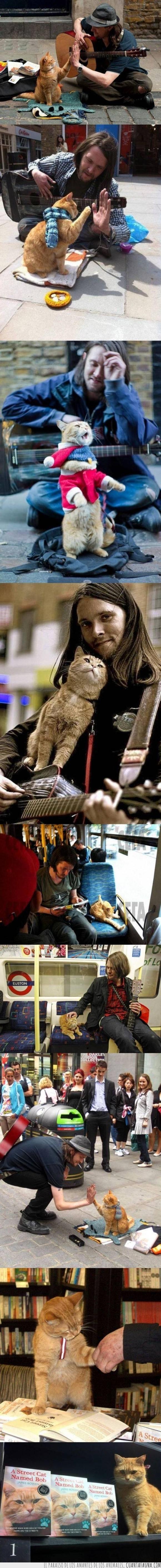 bob,gato,indigente,libro,musico,salir adelante,sigue siendo mejor que twilight,sin hogar