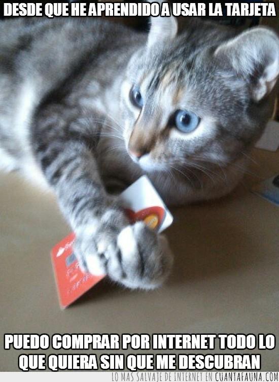 comprar,descubrir,mastercard,por internet,tarjeta de crédito