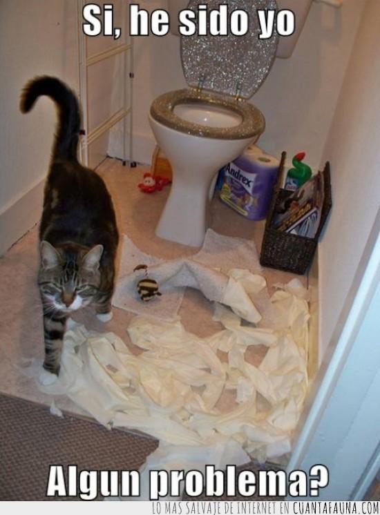 desastre,destrozado,estropicio,papel higiénico,¿Algún problema?