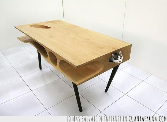 gato,huecos,jugar,mesa,trabajar