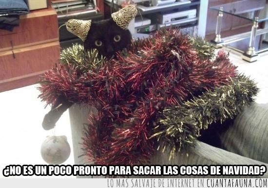 adornos,guirnaldas,navidad,navideño