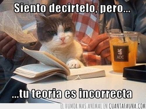 corregir,gato,incorrecta,inteligente,libro,teoría