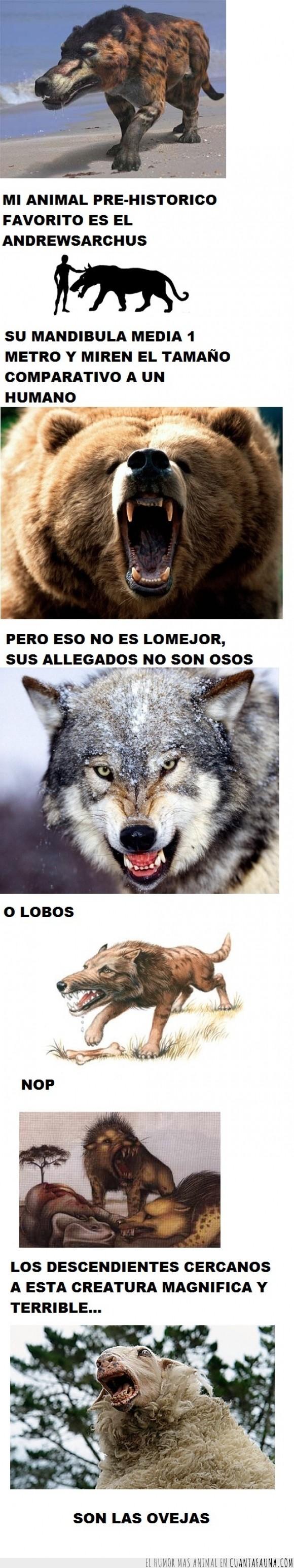 andrewsarchus,animal,feroz,lobo,miedo,oso,oveja,pre-historico,prehistoria