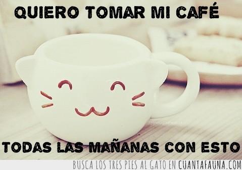 café,mañanas,taza,tomar